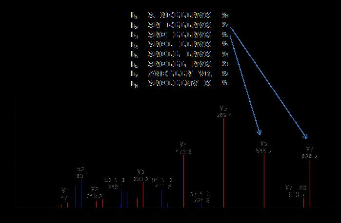 PEAKS - peptide de novo sequencing
