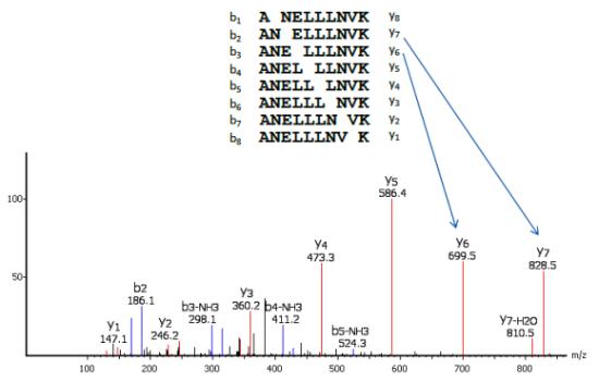 PEAKS de novo peptide sequencing