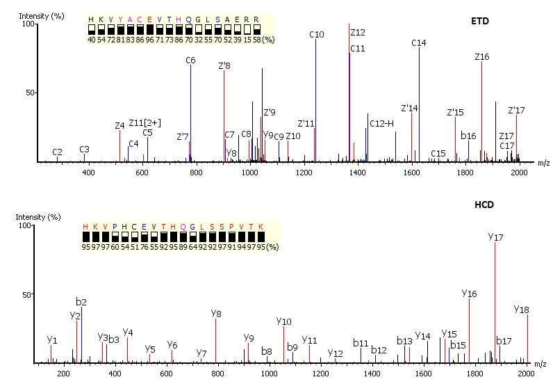 PEAKS - de novo peptide sequencing - complementary ETC-CID